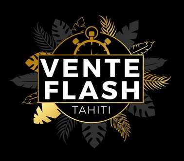Logo Vente Flash v11.jpg
