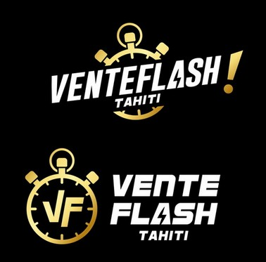 Logo Vente Flash v1.jpg